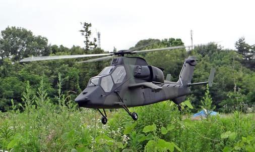 600-Tiger-9.jpg
