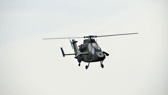 600-Tiger-13.jpg
