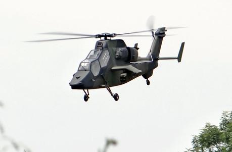 600-Tiger-11.jpg