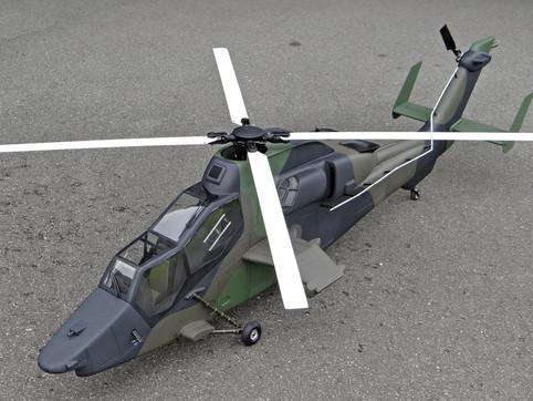 600-Tiger-8.jpg