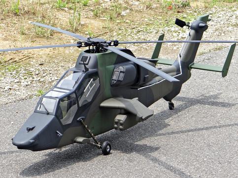 600-Tiger-10.jpg