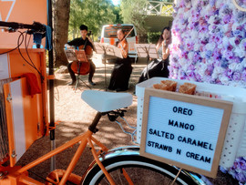 Ice cream van cart hire for Melbourne wedding