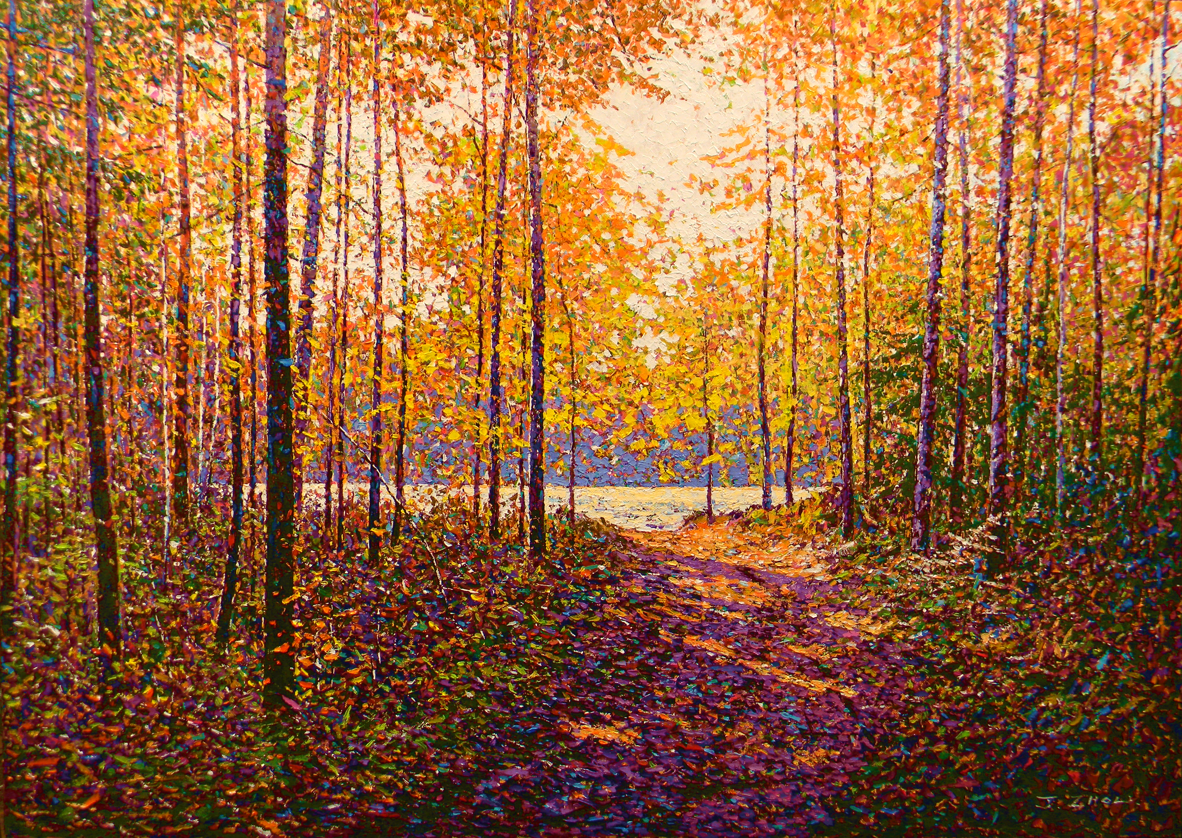Forest In Autumn III