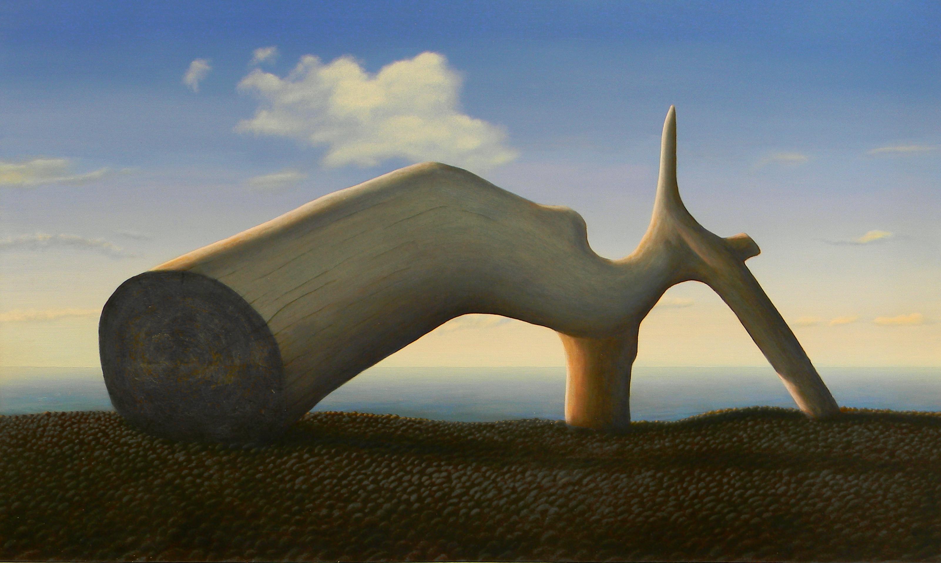 Driftwood Form