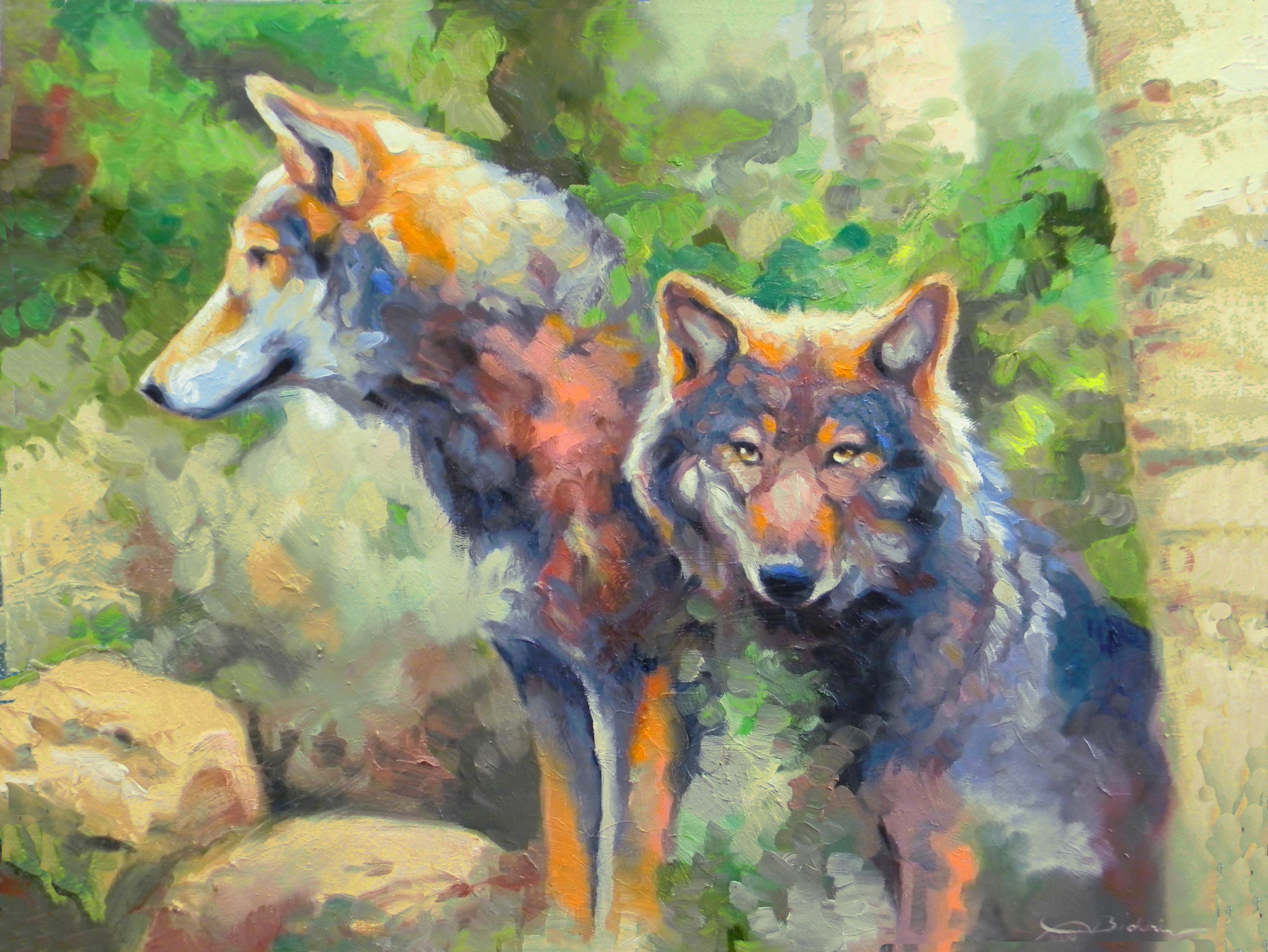 Timber Wolves In The Woods