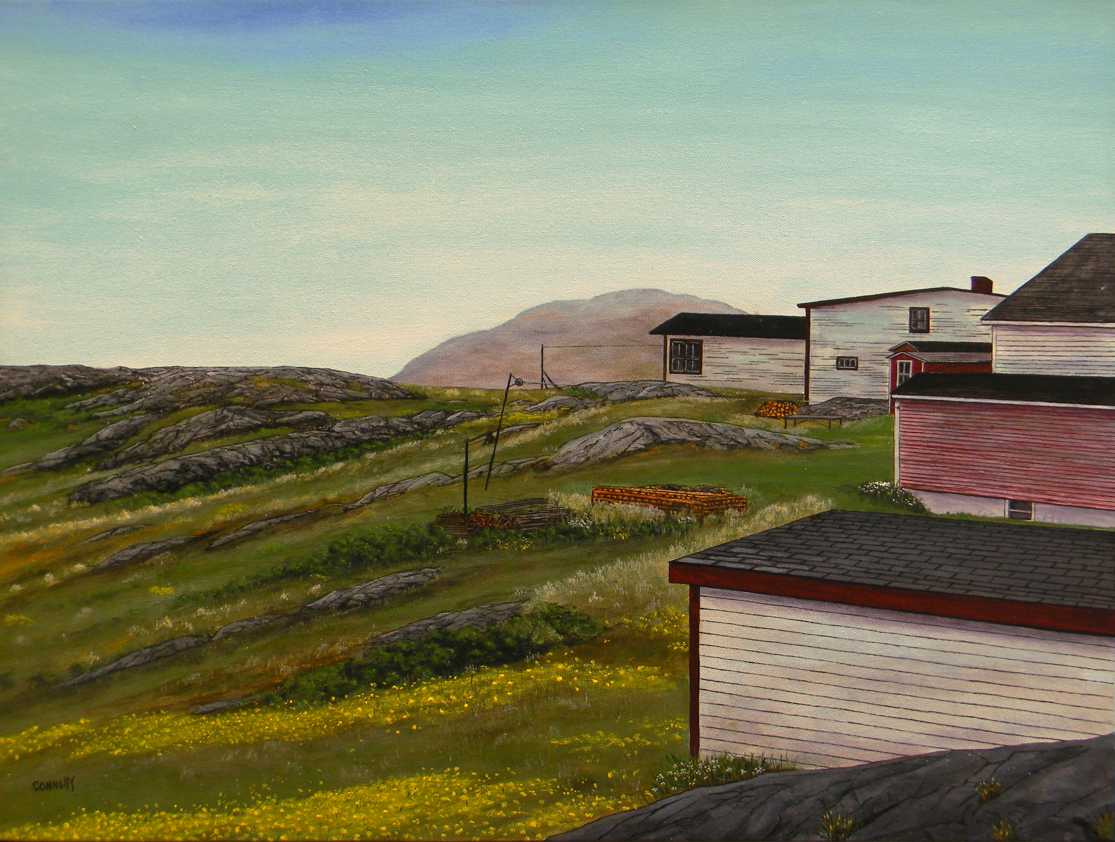 Behind The Sheds In Fogo