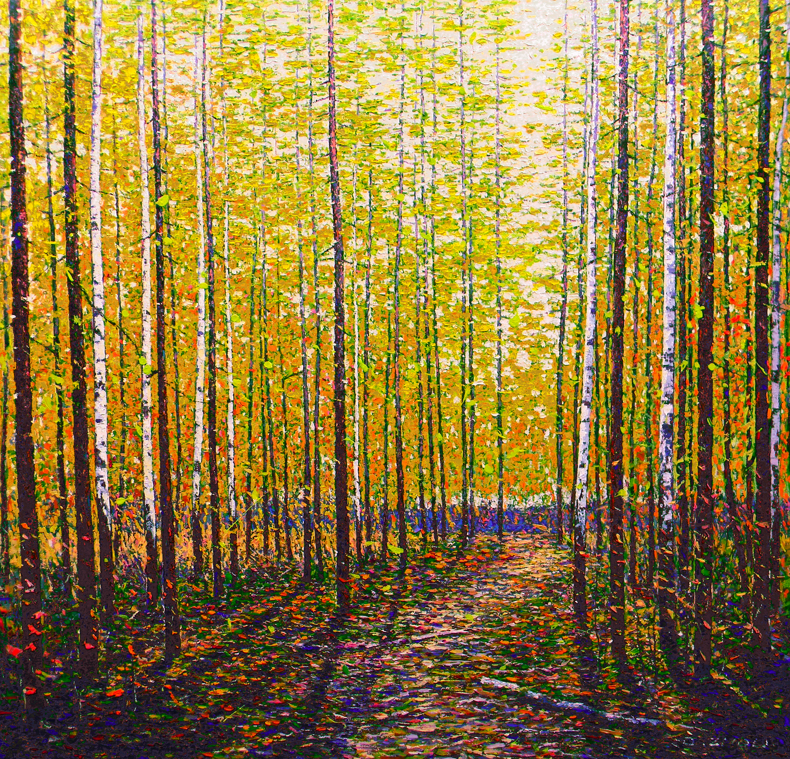 Forest In Autumn II