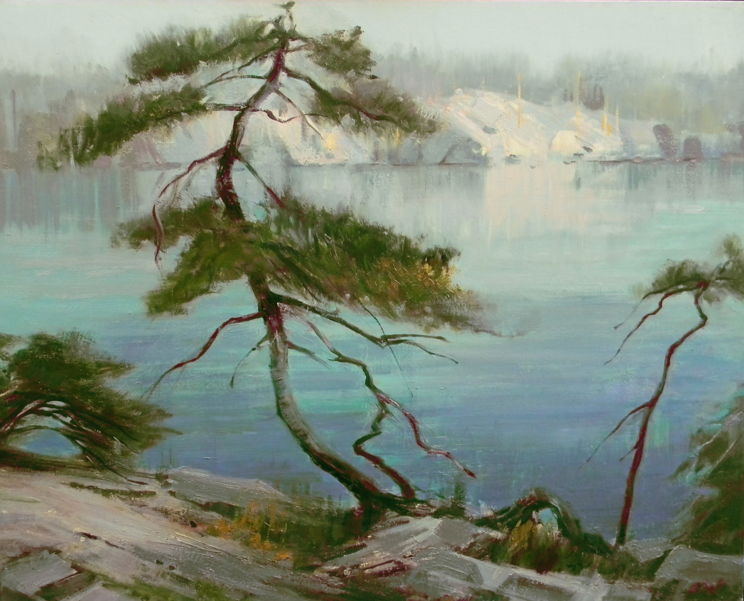 Jack Pine, A.Y. Jackson Lake, 6 am