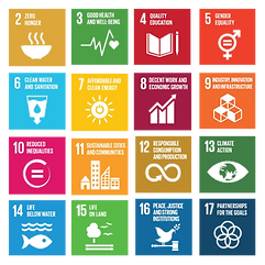 17 SDGs no background.png