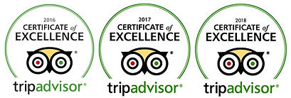 2016-2108 certificate of excellence.jpg