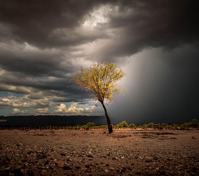 Yanina Golocovsky, Calma y tormenta.