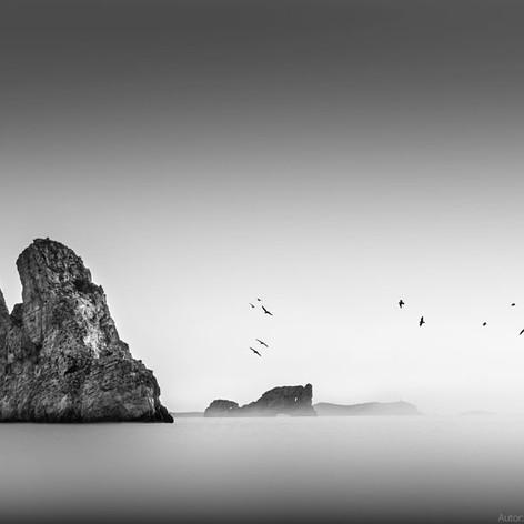 """Carlos Punyet Miró, """"Calma total"""""""