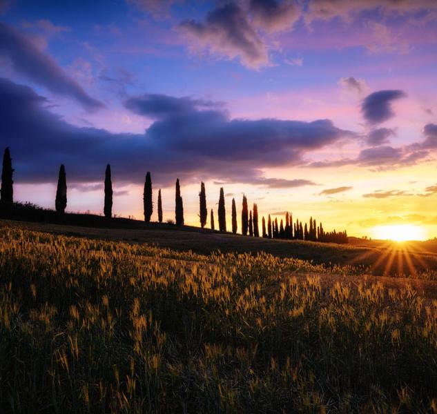 Mariana Martin, Toscana.
