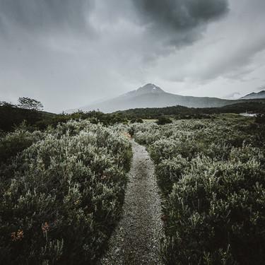 Pablo Ramos, Camino a la tormenta.