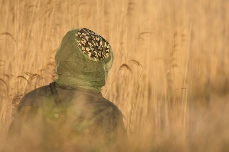 Rencontre photographique en baie de Somme – Le marais du hâble d'Ault