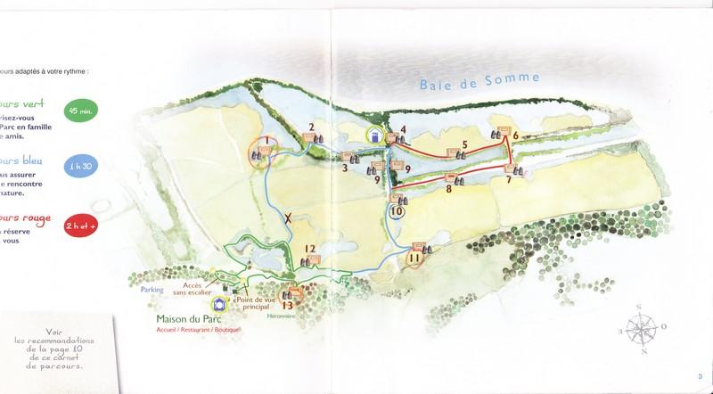 Rencontre photographique en baie de Somme – Le parc du Marquenterre