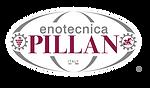 Pillan Logo.png
