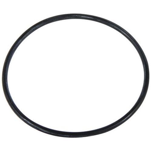 O-Ring zu Gehäuse zu Ansaugfilter