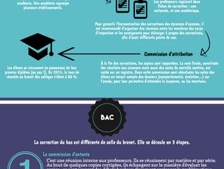 Infographie : la correction du brevet et du bac