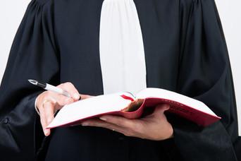 Chronique d'un élève avocat