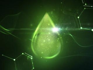 Le biopétrole à base d'algues, vraie bonne idée ?