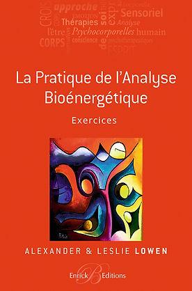 la pratique de l analyse bioenergetique