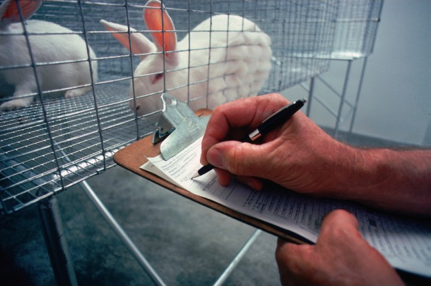 L'expérimentation animale est mise en débat dans le numéro 13 de Kezako Mundi.
