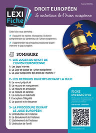 Couverture Lexifiche Contentieux européen