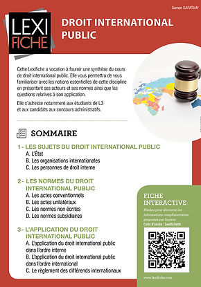 DROIT INTERNATIONAL PUBLIC.jpg