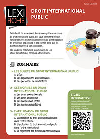 DROIT INTERNATIONAL PUBLIC.jpg