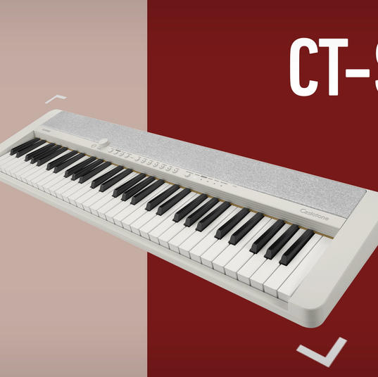 Casiotone Product PV