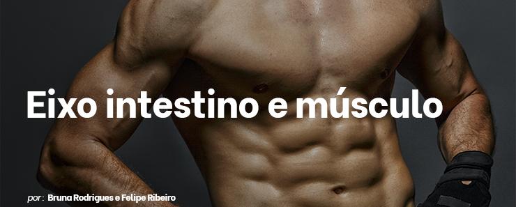 Eixo intestino e músculo: como acontece essa interação?