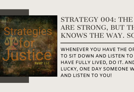 Strategy 004: The young are strong, but the old knows the way. So listen!