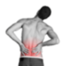 腰痛対策.png