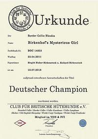 Misty Club Champion_edited.jpg