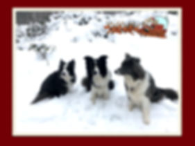 weihnachtskarte wix.001.jpeg