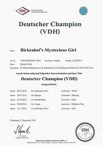 Misty VDH Champion_edited.jpg