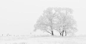 Pourquoi se marier en hiver est hyper romantique...