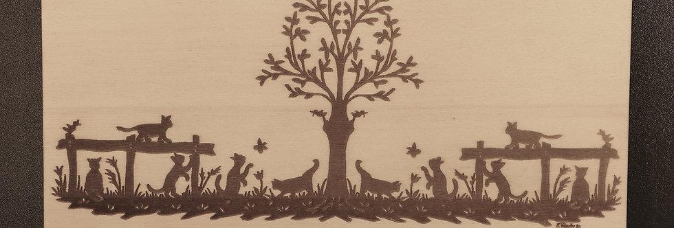 Bild Árbol de gato