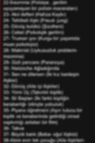 film listeleri1.JPG