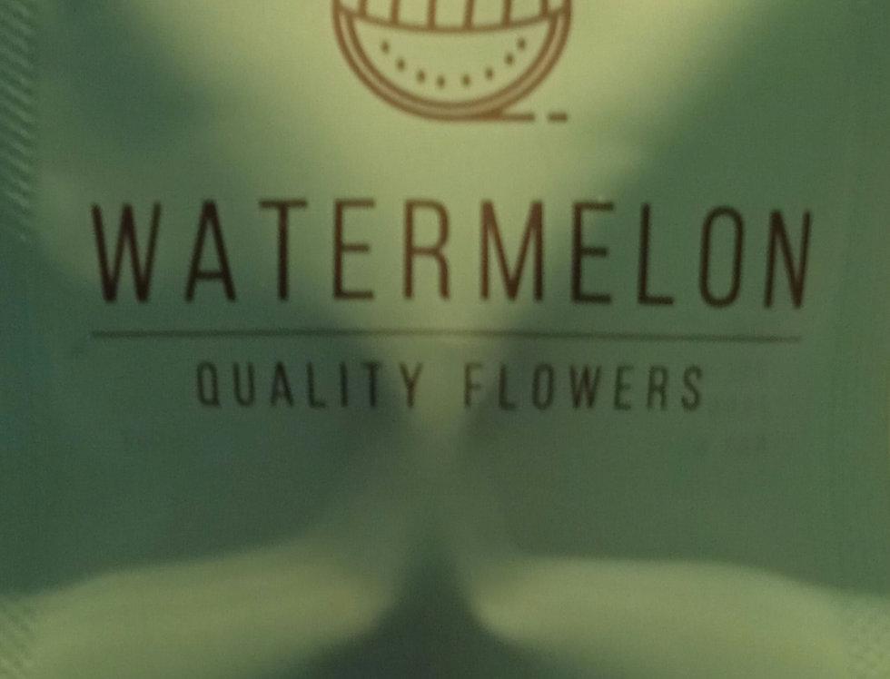 Watermelon by Genesi