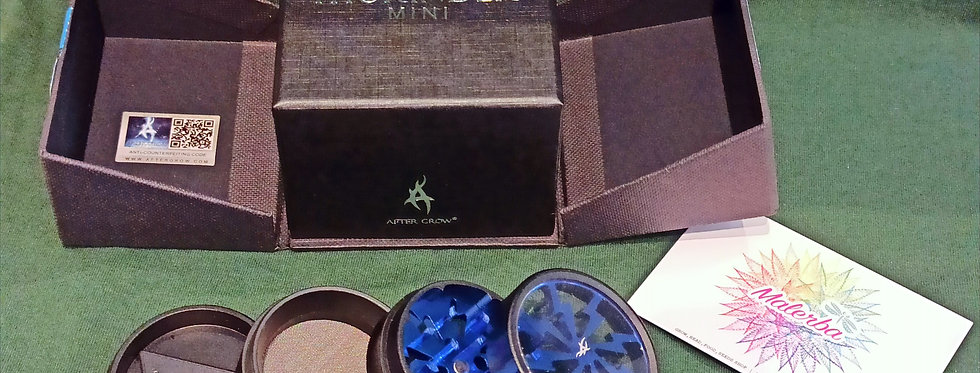 Mini Thorinder Blu