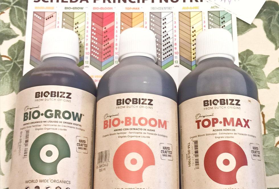 Kit Biobizz Indoor 500 ml