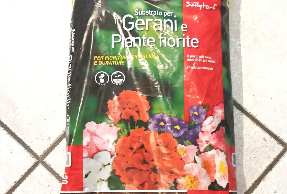 Gerani e Piante fiorite Terflor 5L