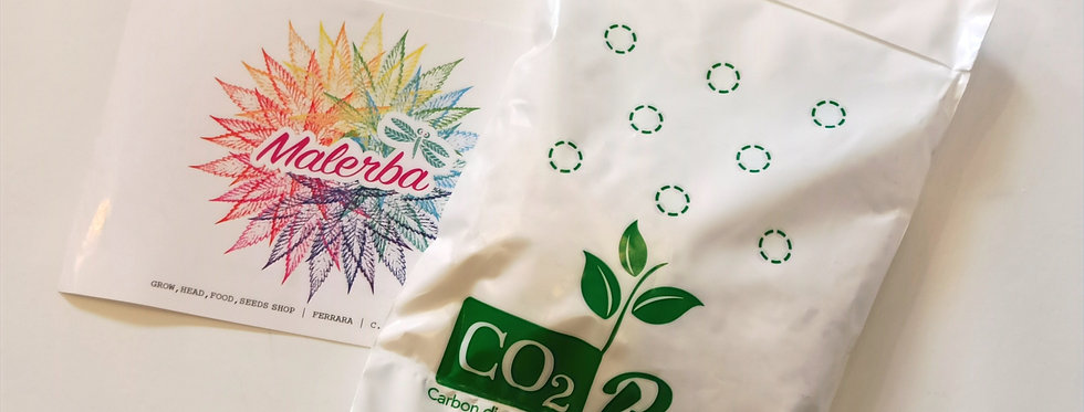 CO2 Bag