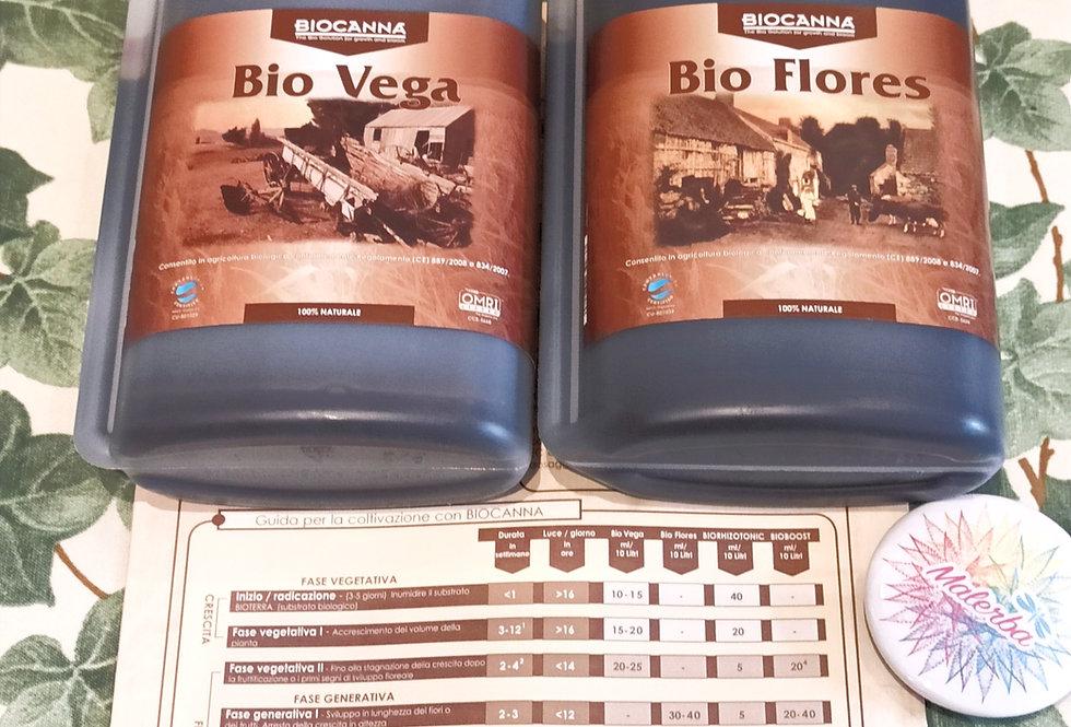 Kit Biocanna 500 ml