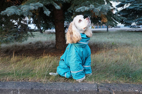 Custom Raincoat