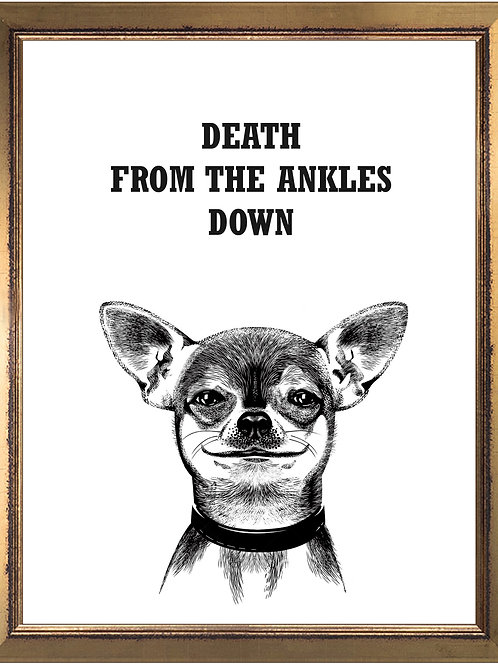 Chihuahua Funny Quote