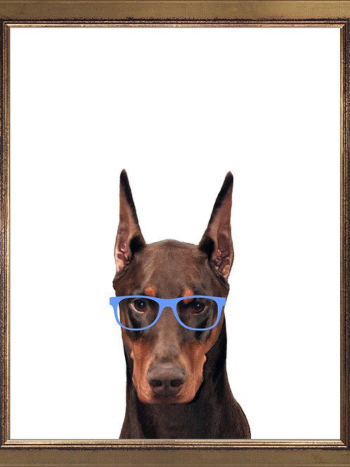 Doberman Wearing Glasses