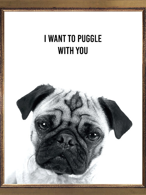 Pug Funny Quote